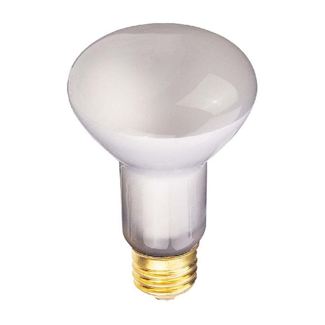 Ampoule 25W