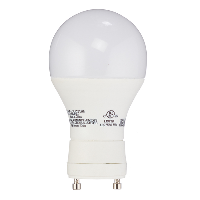 Ampoule DEL A19 10 W, non variable, blanc froid