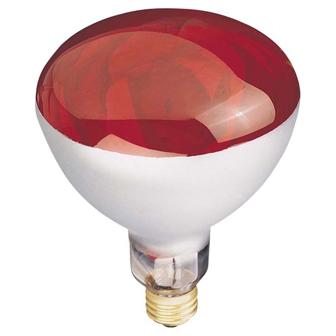 Ampoule chauffante incandescente GLOBE, R40, E26, 250 W, rouge