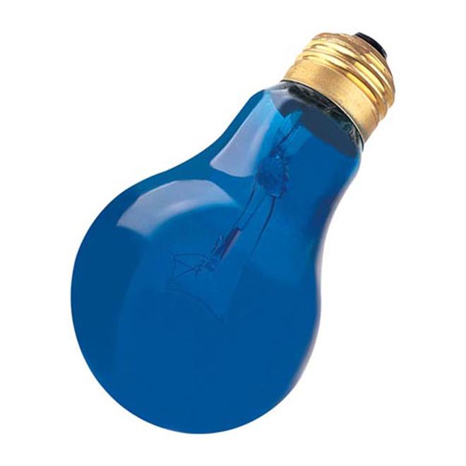A19 Incandescent Light Bulb - 60 W - Blue - 1/Pk
