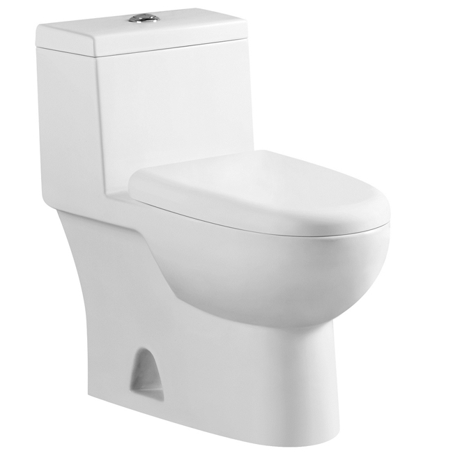Elongated-Front 1-Piece Toilet - Dual Flush 4L/6L - White