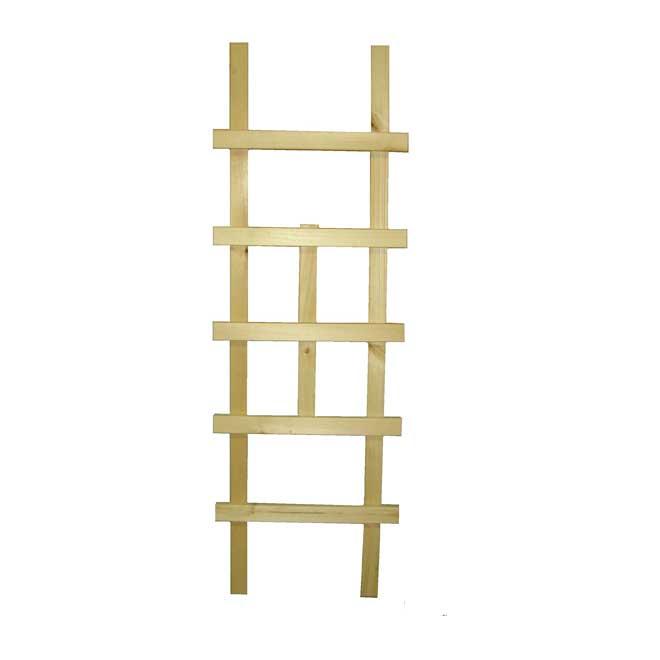 """""""Ladder"""" Lattice"""