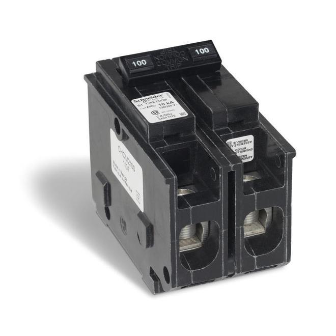 Miniature Circuit-Breaker - 100 A - 120/240 V AC - 2 poles