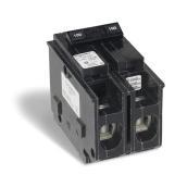 Disjoncteur miniature, 100 A, 120/240 V CA, 2 pôles