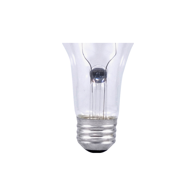 Bulb A21 E26 - Dimmable - Soft White - PK1