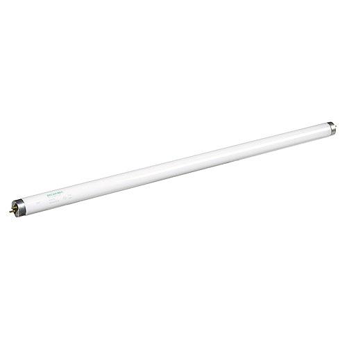 Fluorescent «Octron» Sylvania, T8, 17 W, 24 po, blanc froid