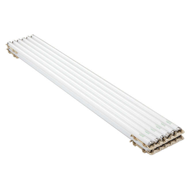 Linear Bulb T8 - No Dimmable - Cool White - PK12