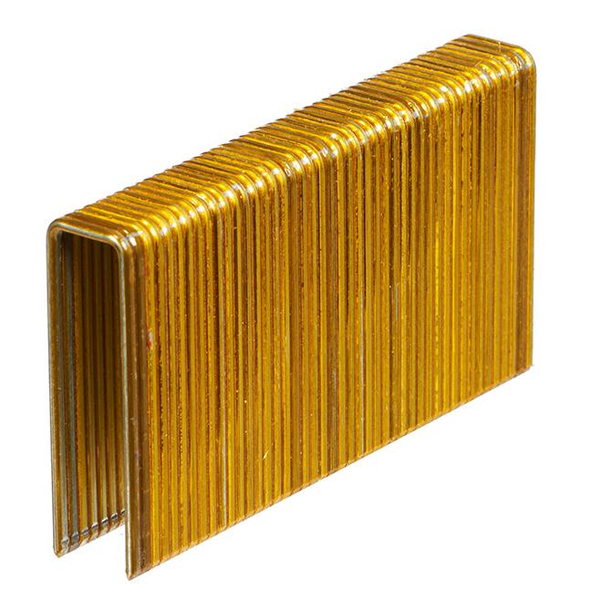 Agrafes à plancher, galvanisé, 1 3/4'', bte/10 000