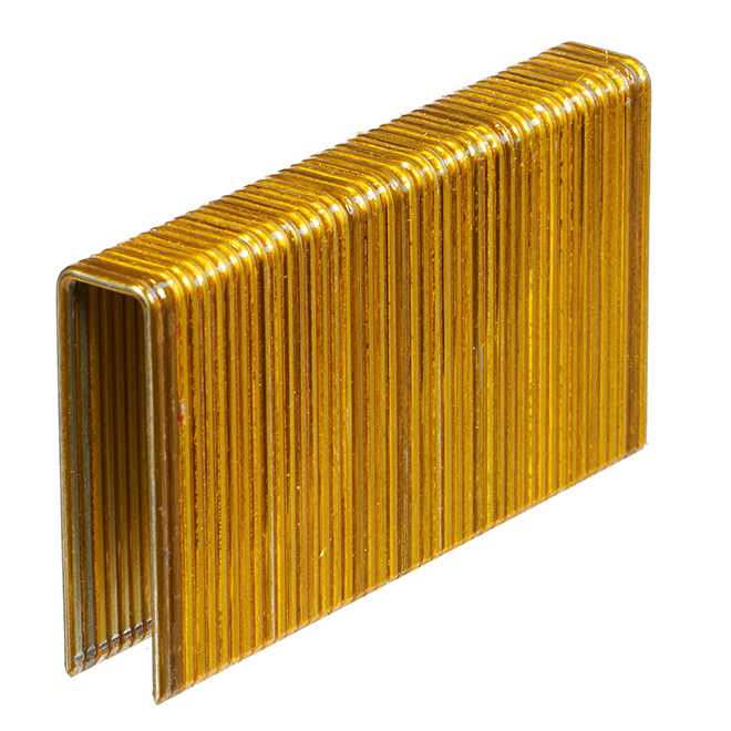Galvanized Steel Flooring Staples - 1 3/4'' - 10000/Box