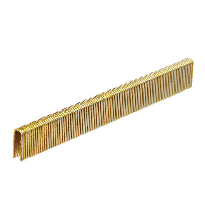 Galvanized Staples - Fine 5/8'' - 1000/Box