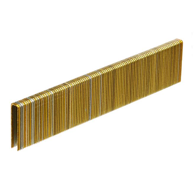 Galvanized Staples - Fine 1'' - 1000/Box