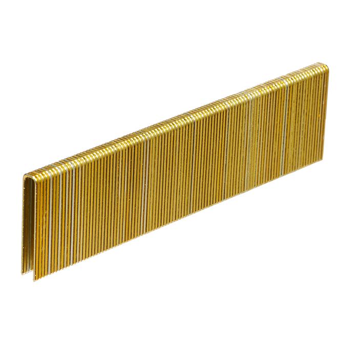 Galvanized Staples - Fine 1/2'' - 1000/Box