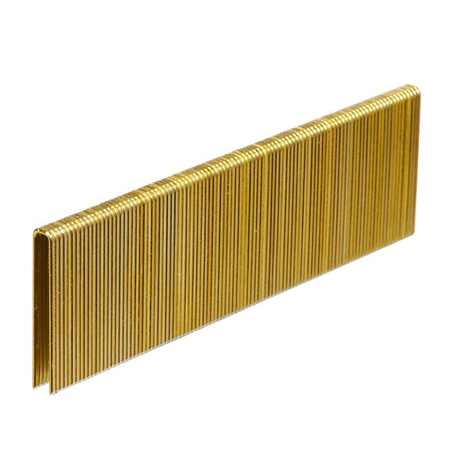 Galvanized Staples - Fine 1 1/2'' - 1000/Box