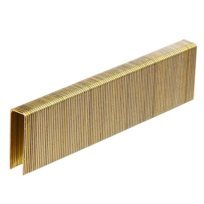 Galvanized Staples - Fine 1 1/4'' - 1000/Box