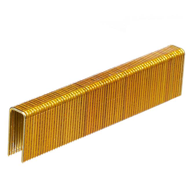 "Construction Staples - Galvanized - 1"" - Gauge 16 - 10,000/box"