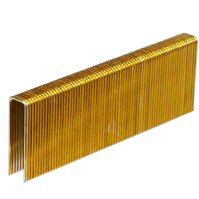 Galvanized Construction Staples - 1 1/2'' - 1000/Box