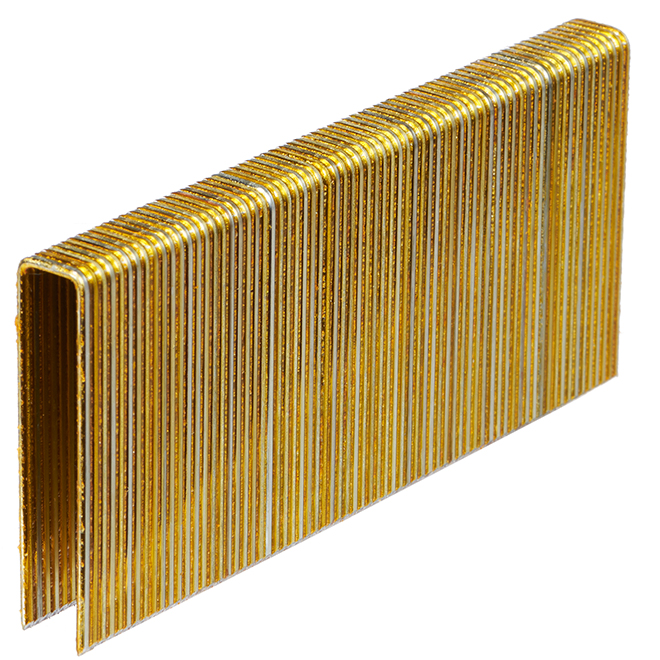 Galvanized Construction Staples - 2'' - 10 000/Box