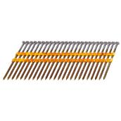 Framing Nails - Screw Shank - 3 1/4'' - 3000/Box