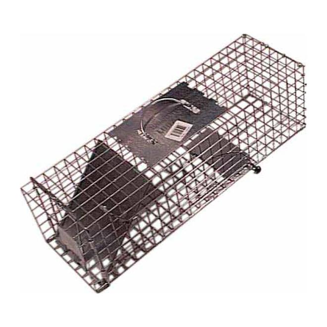 Trap - Squirrel Trap