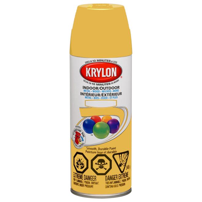 Indoor/Outdoor Spray Paint