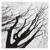 Cotton Black and White Canvas - Up Tree