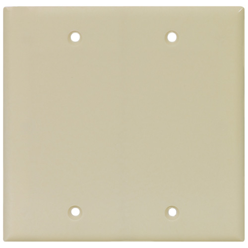 Blank Wall Plate - 2-Gang - Polymer - Ivory