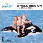 """Monture pneumatique, large baleine, 76"""" x 47"""", noir et blanc"""
