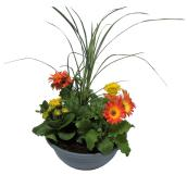 Assorted Table Top Floral Planter - 12-in