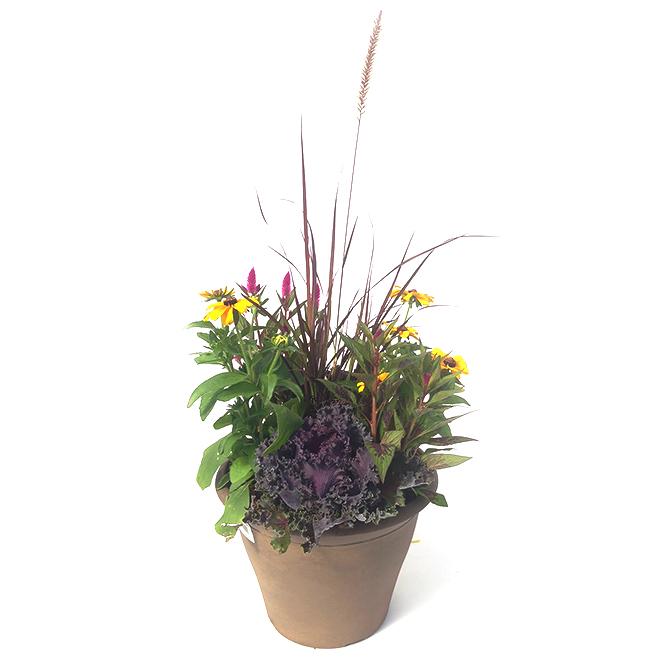 Assorted Fall Arrangement Planter - 13''