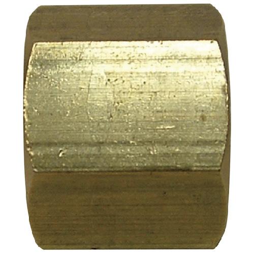 "Pipe Cap - Brass - 1/4"" - FIP"