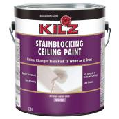 Stain blocking ceiling paint
