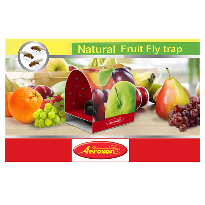 Natural Fruit Fly Trap - Non-Toxic - 2 Strips
