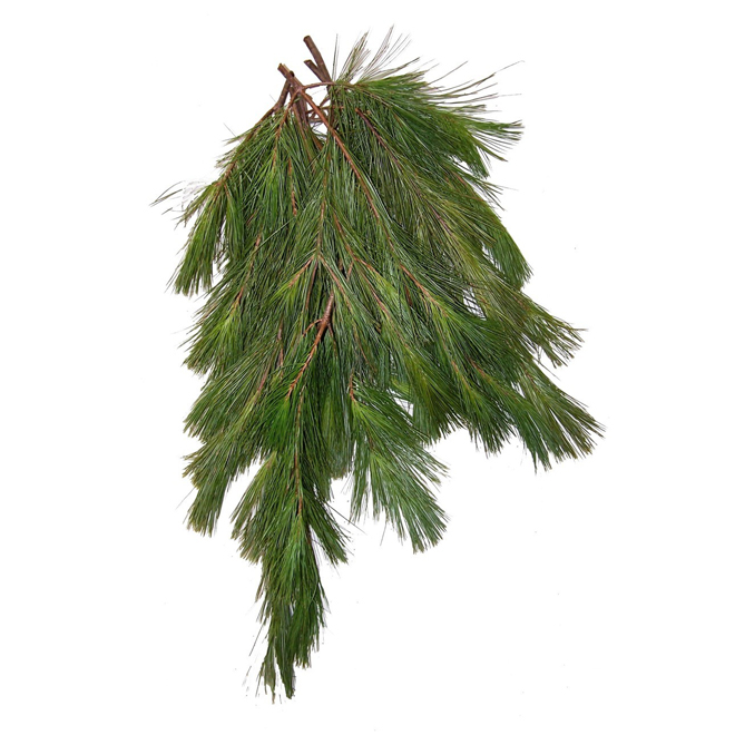 Branches de pin naturel, paquet de 2 lb