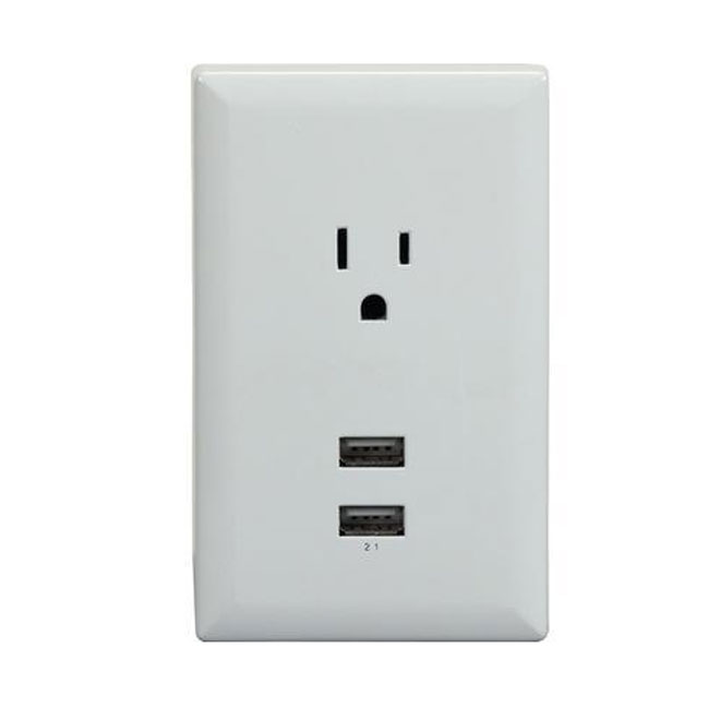 Conversion Wall Plate for Outlet - 2 USB - 2.1 A - White