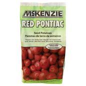 Seed Potato - Red Pontiac - 2 kg