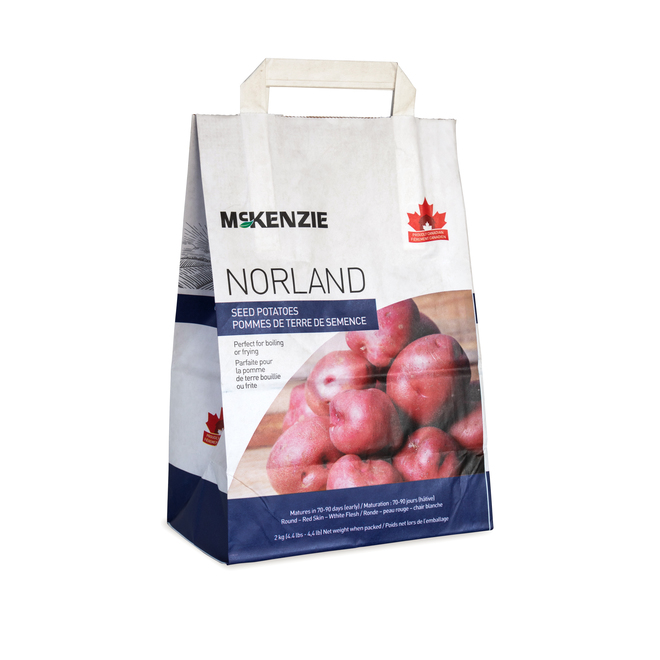 Norland Seed Potatoes - 2.2 kg - Red