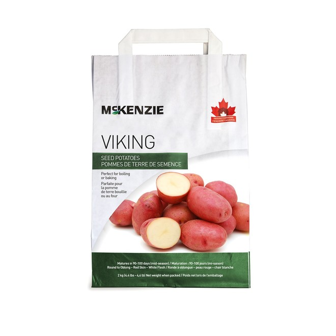 Pommes de terre de semence, Viking, 2,2 kg