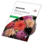 McKensie Dark Side Dahlia - 5 Rhizomes - Mixed Colours