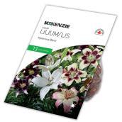 McKenzie Lilium - Mysterious Blend - 13 Bulbs - 14-16 cm