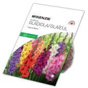 Glaieul Tropical McKenzie, 45 bulbes, mélange pastel