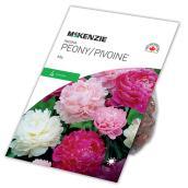 McKenzie Peony - 4 Rhizomes - Blend