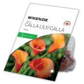 Calla Lily Flamme McKenzie, 3 bulbes, 14 à 16 cm, orange
