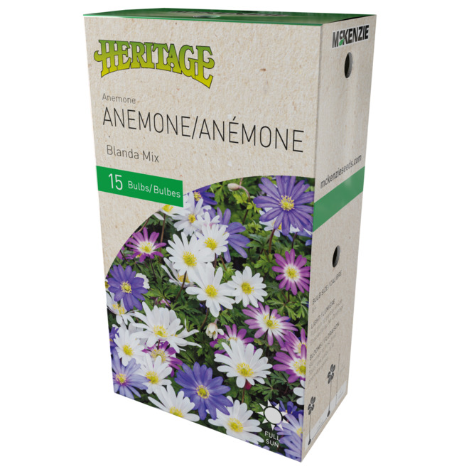 McKenzie Anemone Blanda - 15 Bulbs - 5 cm - Mixed Colours