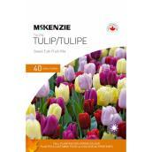 Bulbes de tulipes, mélange Sweet Tutti Frutti, 11-12 cm/12-14 cm, paquet de 40