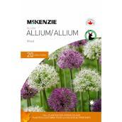 Mélange de bulbes d'alliums McKenzie, 10-12 cm, paquet de 20