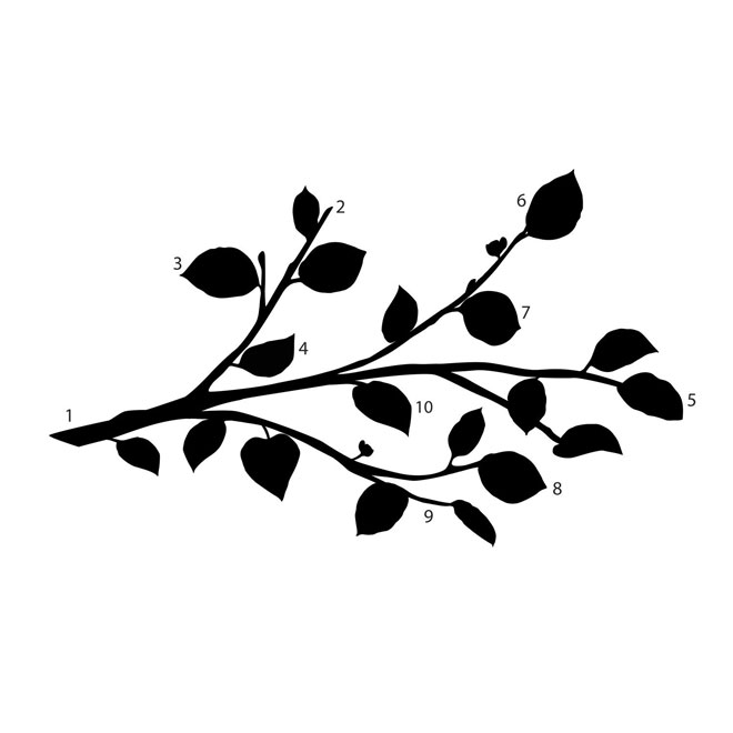 """""""Branch and Flower """" Wall Decals with"""