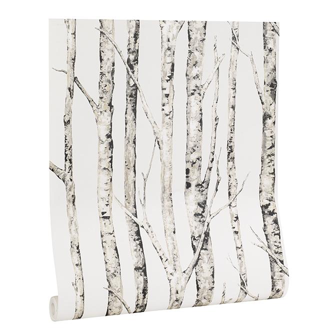Papier peint, bouleaux, 33', blanc neutre