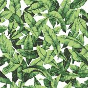 "Palm-Leaf Design Wallpaper - Green - 20.5"" x 16.5'"
