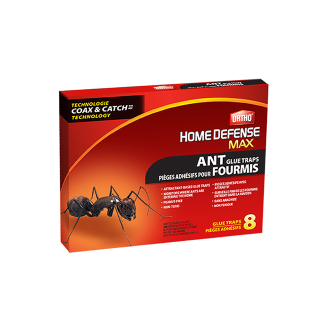 Ant Glue Traps - Pack of 8
