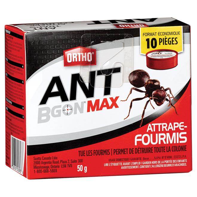 Pièges à fourmis, paquet de 10, 50 g